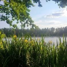 Озеро в коттеджном поселке Довиль