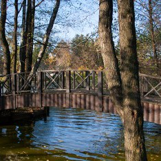 Живописный мостик в КП Довиль