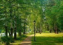 Зелёный сад