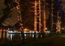 Деревья с подсветкой в КП Довиль